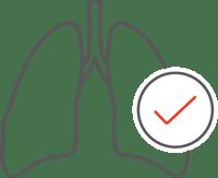 Pulmonary Icon